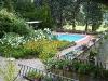 Fallflowers_pool