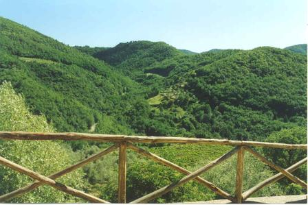 view-from-patio-at-villa-paterno.jpg