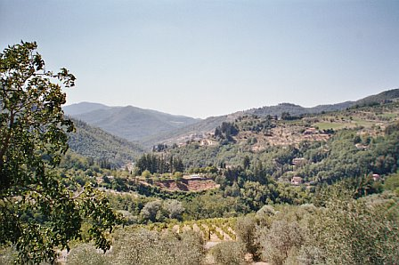 view-of-valley-at-villa-paterno.jpg