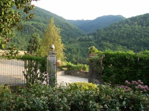 View from entrance to Villa outward