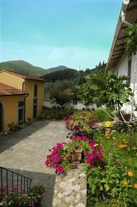 Back Courtyard Villa Zingale